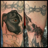 pug dog portriat tattoo