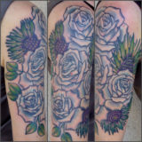 blue roses tattoo