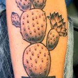 black and grey cactus tattoo