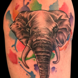 elephant watercolor tattoo