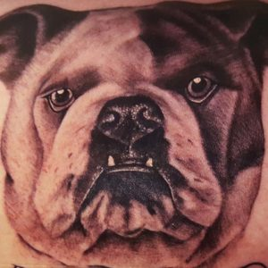 bulldog portrait tattoo