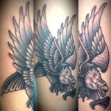 black and grey eagle