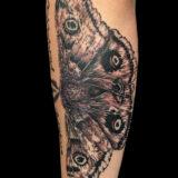 black and grey moth tattoo