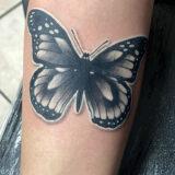 butterfly tattoo on forearm