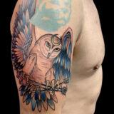owl color tattoo